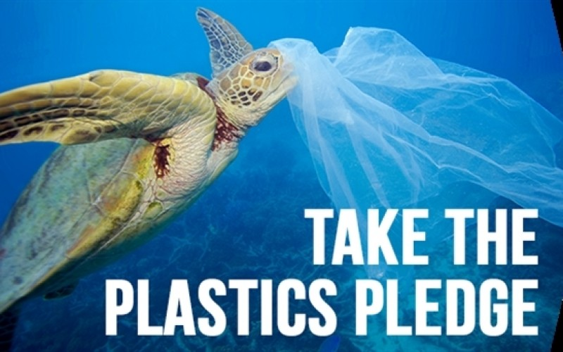 6 amazing plastic bans from around the world | Greenpeace International