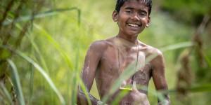 Sri Lanka Has Been Declared Malaria-Free – Good News Network