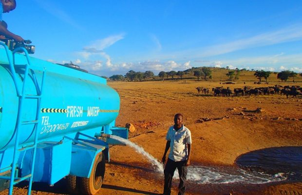 Man drives hours every day in drought to bring water to wild animals