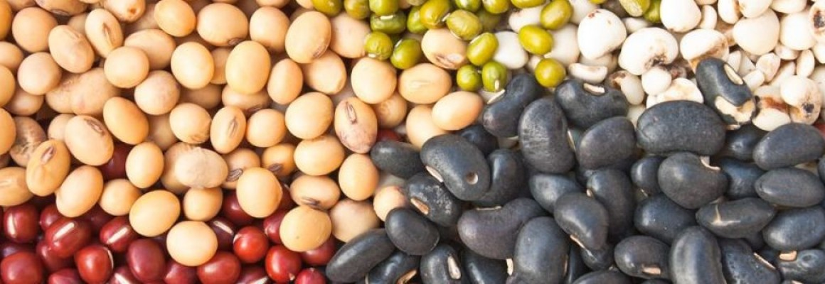 beans-beans-they-re-good-for-your-heart_1050x350